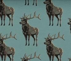 Cerfs Turquoise